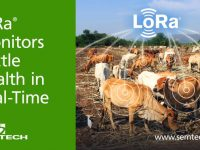 Semtech's LoRa Monitors Cattle Health